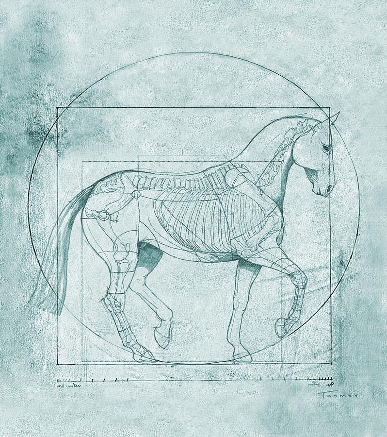 Da Vinci. PTSD Blueprint2 Trot