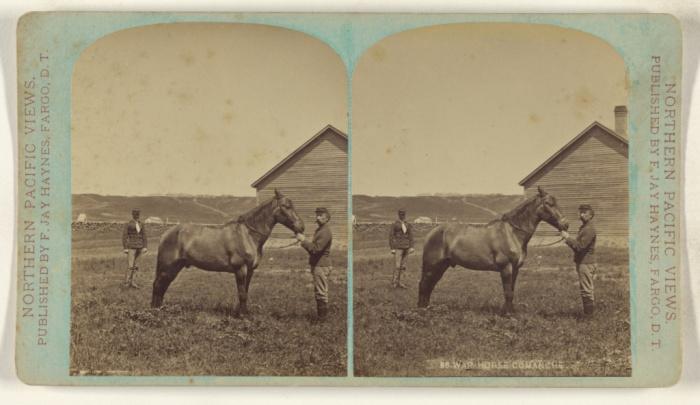 Comanche F JAY HAYNES