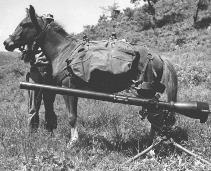 sgt_reckless_with_recoilless-rifle-741x603