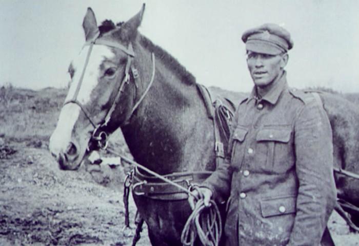war-horse-versailles